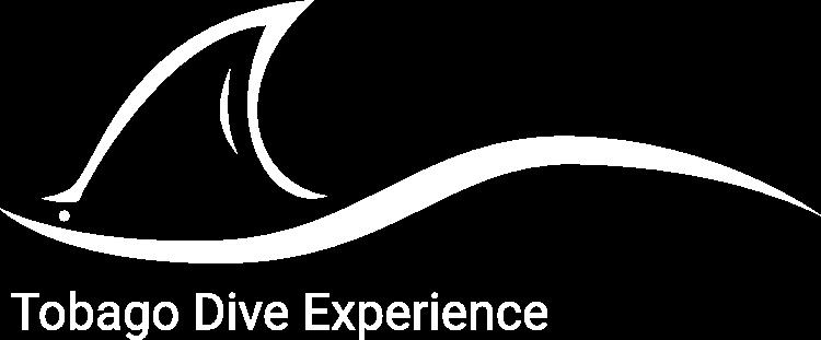 Tobago Dive Experience